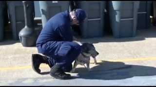 Coast Guard Cutter Legare Crew Returns to Portsmouth, Va