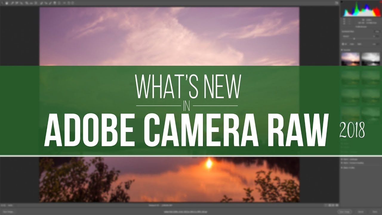 camera raw 10.3
