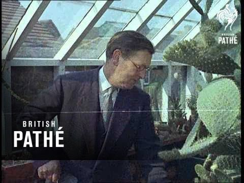 Out Takes / Cuts From Cp 455 - Pestalozzi Village / Tropical Gardens / Cliff Rescue (1963)
