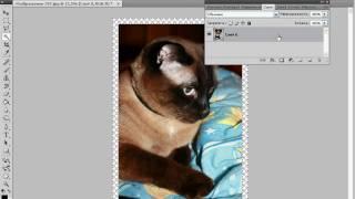 Рамочка в Photoshop (33/40)