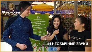 бРЕДОМЕТР #1 (Пилот) - НЕОБЫЧНЫЕ ЗВУКИ (Звук микроволновки, как знакомятся с девушками в Ташкенте)