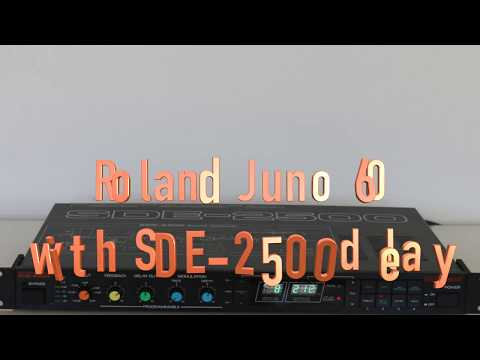 Roland Juno 60 with SDE 2500 delay Chill Out