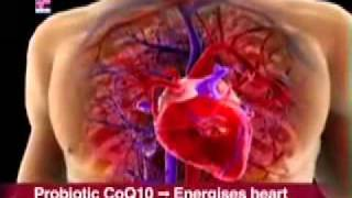 研究发现精胺酸与辅酶Q10有助维护心血管健康,该一氧化氮理论为富丽华德副董事长穆拉德博士获得诺贝尔奖之理论