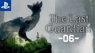 Parkour w świątyni #6 The Last Guardian | PL | Gameplay | Zagrajmy w