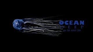Ocean Deep | 3D Anaglyph HD