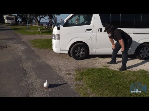 Lucky Rentals Take 2, Episode 2 - Lucky Walkthrough And Vanlife In New Zealand
