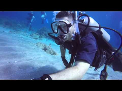 Diving in GTMO