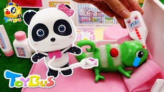 Doctor Panda Cures Baby Gecko | Pretend Play with Doctor Toys | Robocar Poli, Baby Shark | ToyBus.mp3