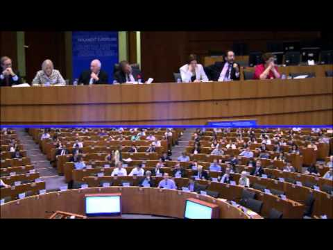 Pan-European Forum on Media Pluralism and New Media - European Parliament - AM SESSION