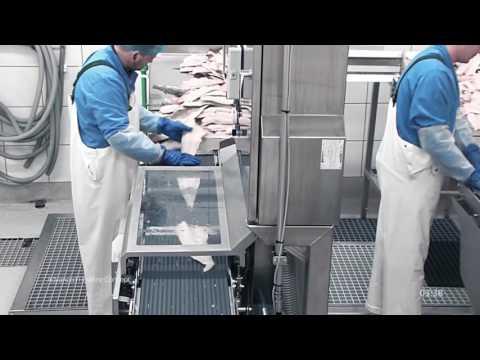 Fish Processing Flowline – Advanced Flowline Concept