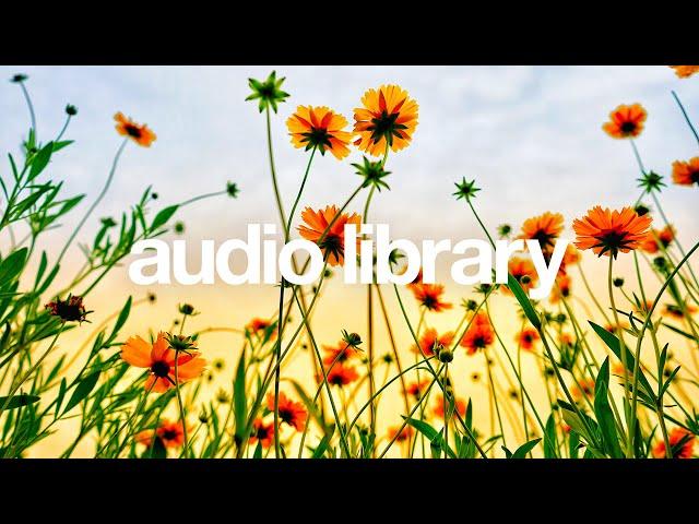 Dayspring — Firefl!es [Vlog No Copyright Music]