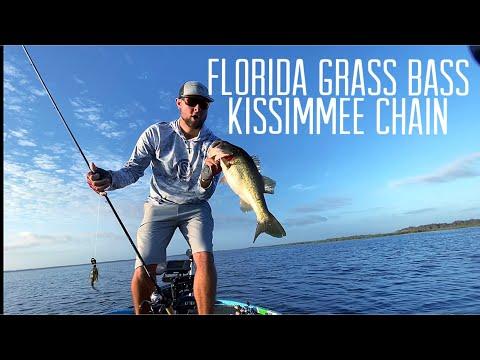 Florida Grass Bass Kissimmee Chain