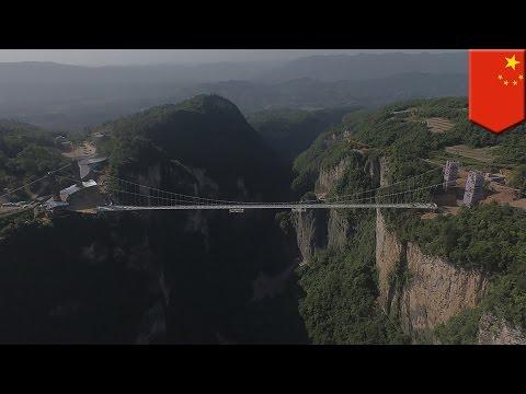 China glass bridge: Zhangjiajie Canyon glass bridge is the world's longest and highest - TomoNews
