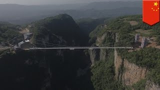 China glass bridge: Zhangjiajie Canyon glass bridge is the world's longest and highest - TomoNews