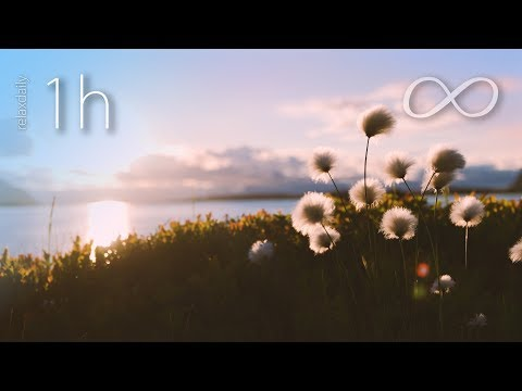 1 Hour of Light and Relaxing music - music for spa, studying, work, relax [N°128 - 1h]