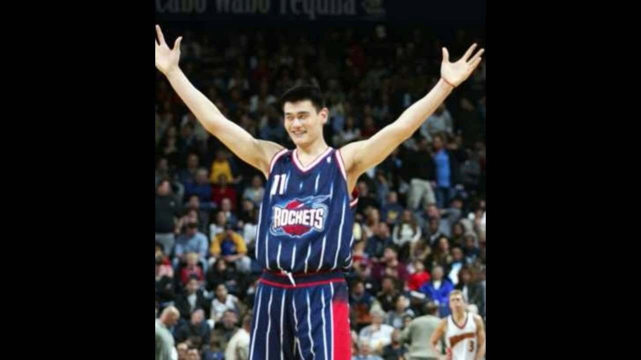 detailed look 0ba64 52147 *TOP 10 SHORTEST WINGSPAN IN NBA ~B'BALL'LYF~