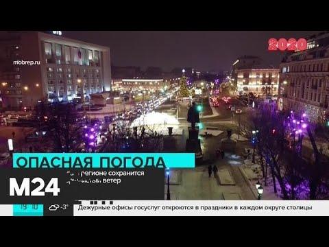 Москвичей предупредили о сильном ветре и гололедице - Москва 24