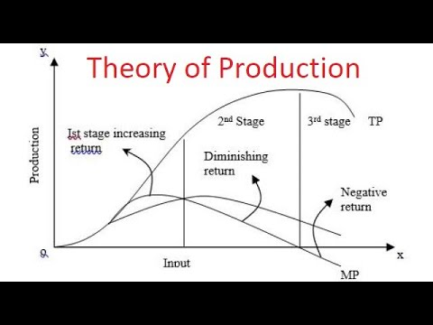Managerial Economics: Chapter-3: Theory Of Production