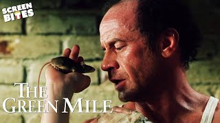 The Mouse On The Mile | The Green Mile | SceneScreen