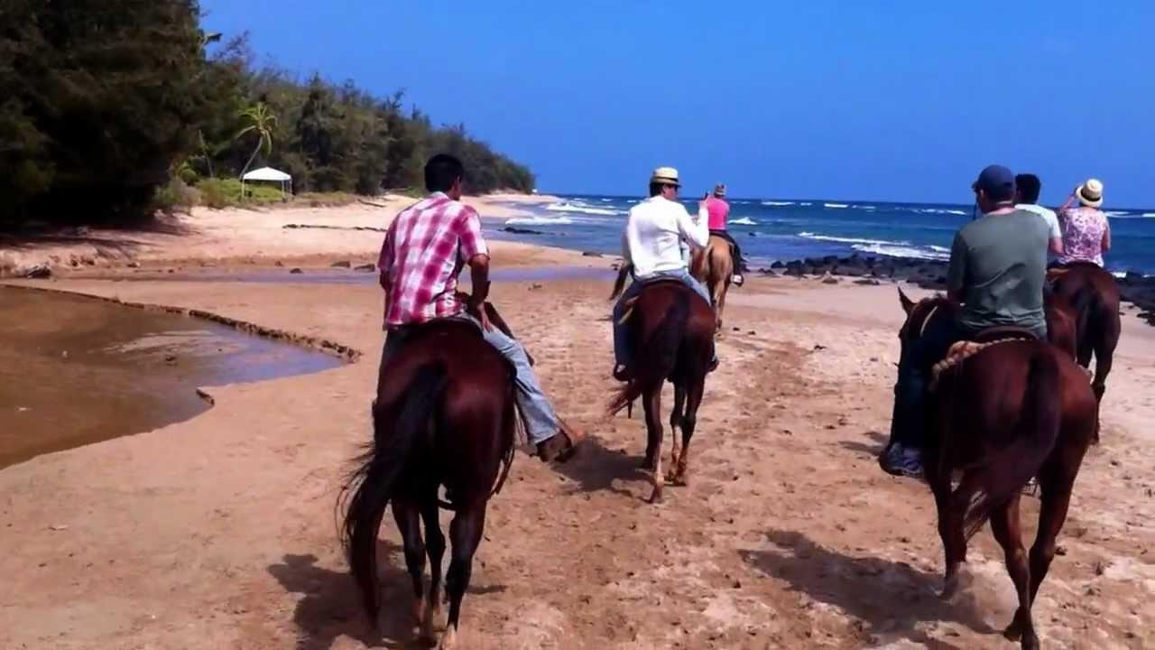Kauai Hawaii On A Beach