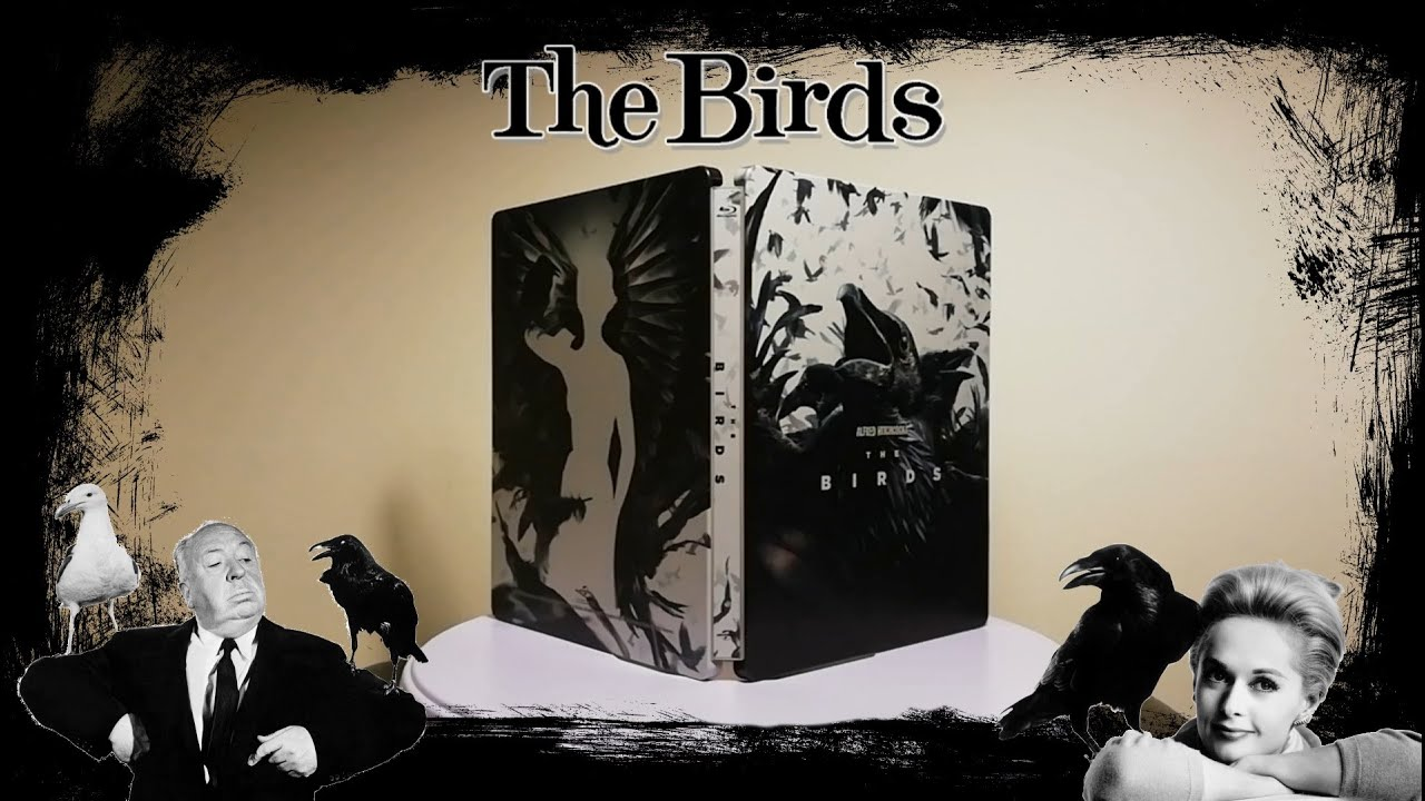 Download The Birds [1963 | Alfred Hitchcock | SteelBook Blu-ray | Starring Rod Taylor & Tippi Hedren]
