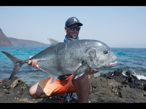 Surfishing And Casting Professional On The Beach And Get Many Big Fish