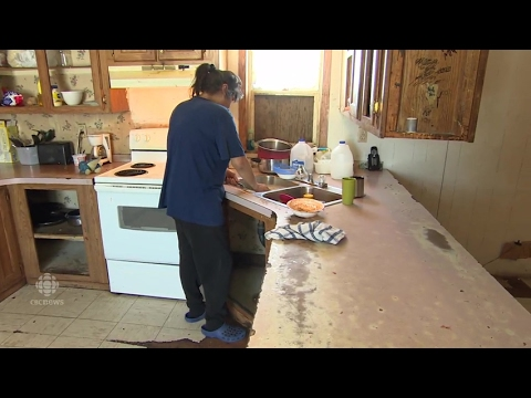 Family still living in home infested with mould, bugs and rodents