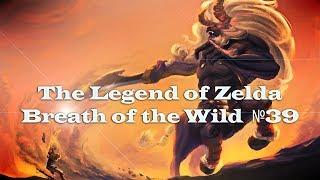 The Legend of Zelda Breath of the Wild №39 (Битва в колизее)