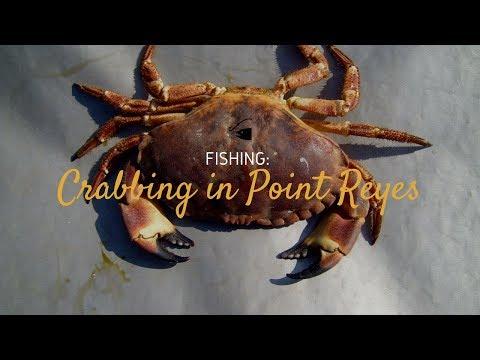 2017 Crab Opening Weekend SF/ Point Reyes