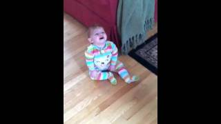 Baby Laugh With Cairn Terrier Dog Giggles