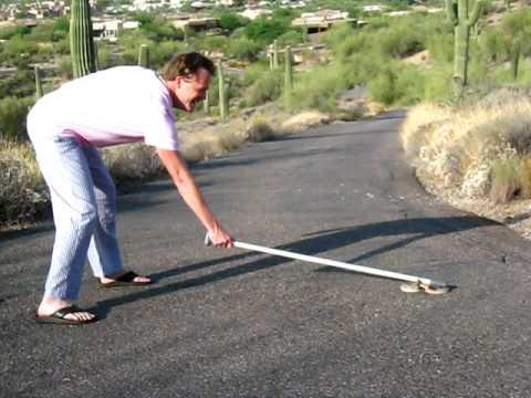 scott winters catches a rattlesnake