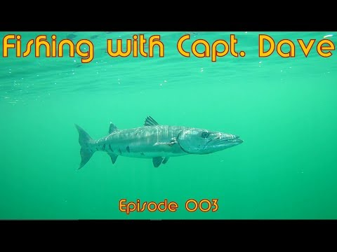 Fishing with Capt. Dave #003 – Offshore for red snapper, lane snapper, red grouper, Barracuda