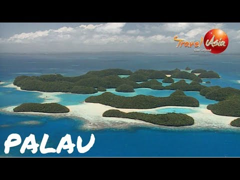 Micronesia - Palau - One of the top diving destination in the Pacific