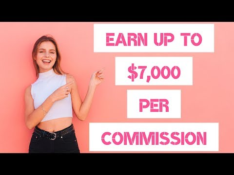 MAKE $7,000 PER SALE WITH THIS HIGH TICKET 2020 AFFILIATE PROGRAM 💰