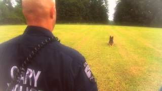 Cary Police Department's K9 Unit: Working For You