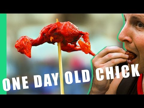One Day Old (Baby Chicks) - Philippines Street Food