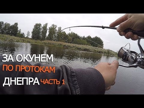 рыбалка на галерном заливе