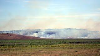 В Одесской области сильный пожар - горят километры лесостепи(В Березовском районе Одесской области сильный пожар - горит несколько километров лесостепи. Мой Канал:..., 2014-08-01T11:42:24.000Z)