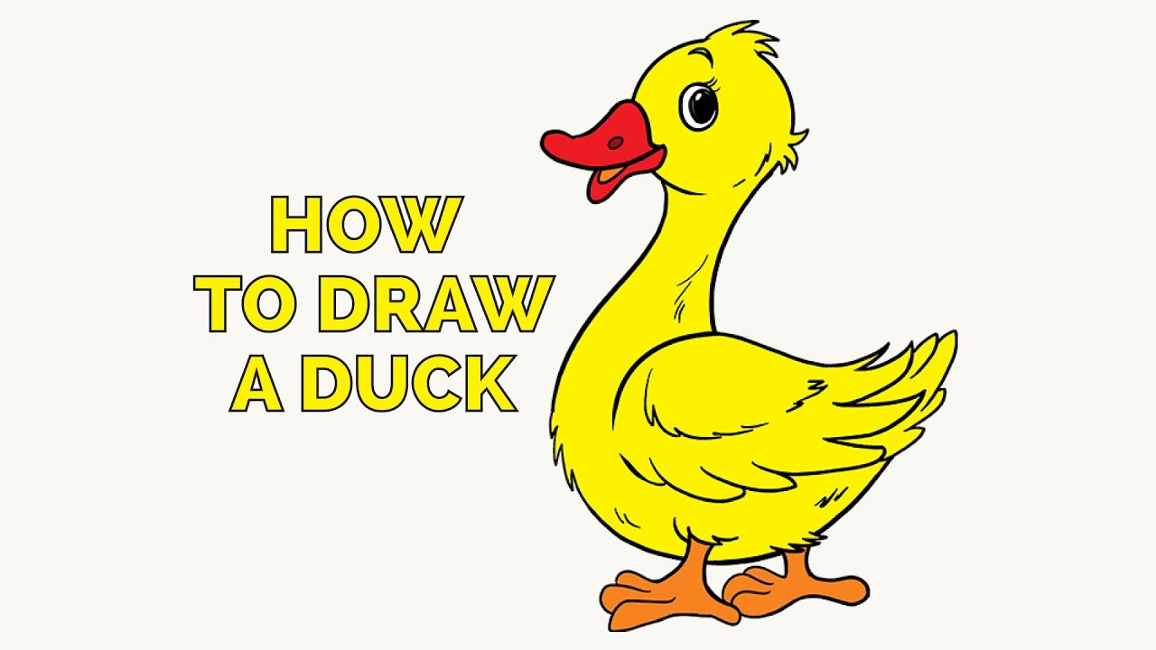 Uncategorized Drawing Of Duck how to draw a duck in few easy steps drawing tutorial for kids and beginners
