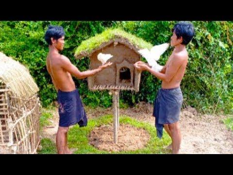 Primitive Building : make build a house for a sad bird - how to building a bird house