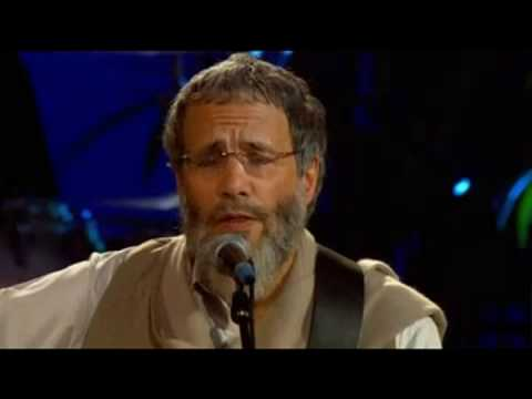 Cat Stevens (Yusuf Islam) - Wild World