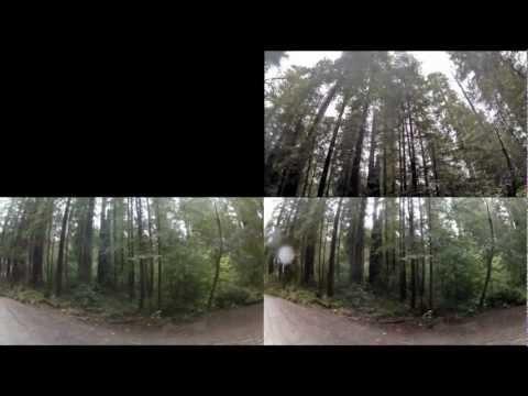 Storm on the Redwood Coast, 3D