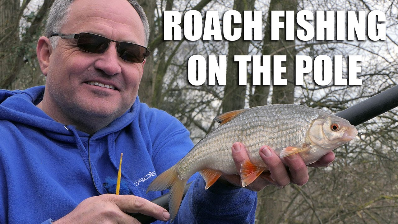 Loaded waggler float bream carp roach match fishing tackle tench fishing
