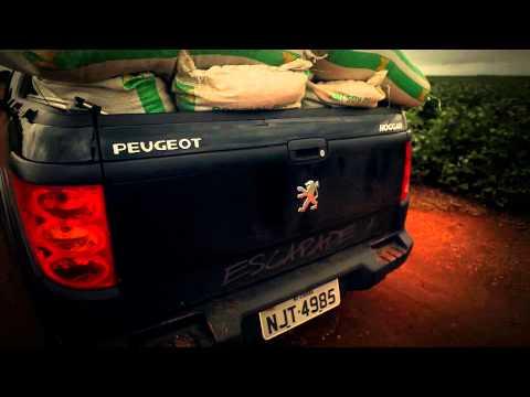 Nation - Peugeot Hoggar