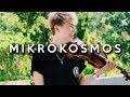 BTS - Mikrokosmos VIOLIN COVER