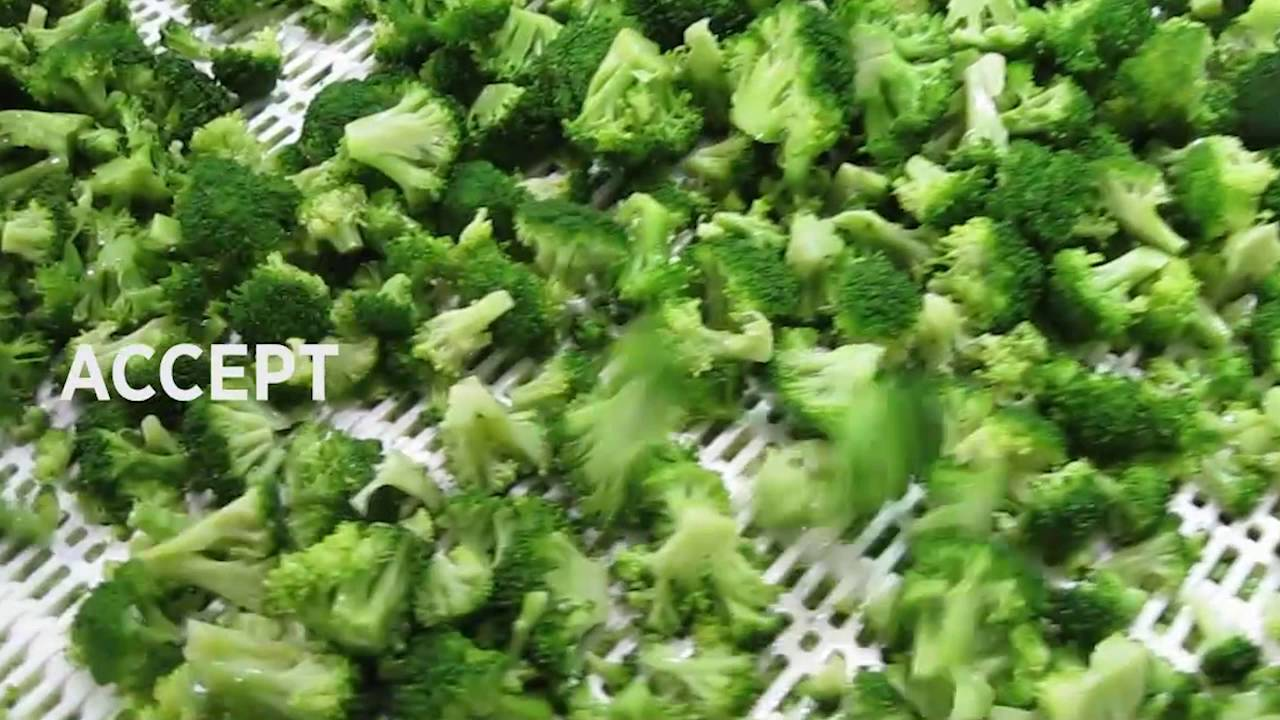 Broccoli sorting machine Genius - TOMRA Sorting