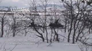 Палана 2010. Охота на медведя (часть 3)..mp4