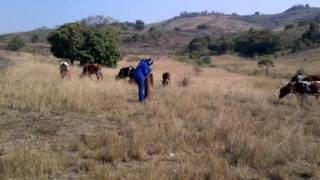Vacant Land For Sale in Vanrova, Tongaat, South Africa for ZAR R 805 000