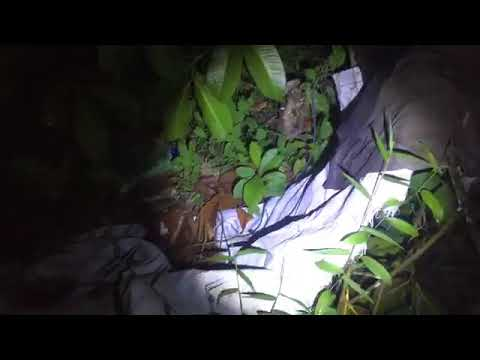 Solo Ambush Search and Rescue Acap (SSARA) Part III Full Video (Found old clothing)