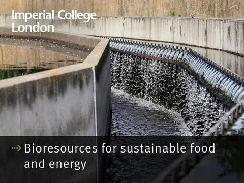 Bioresources for sustainable food and energy - Professor Stephen Smith